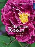 Historische Rosen: im Europa-Rosarium Sangerhausen
