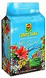 COMPO SANA Qualitäts-Blumenerde mit 12 Wochen Dünger für alle Zimmer-, Balkon- und...