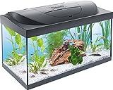 Tetra Regular Starter Line Aquarium-Komplettset mit LED-Beleuchtung stabiles 54 Liter...