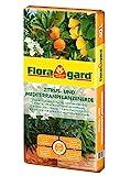 Floragard Zitrus- und Mediterranpflanzenerde 40 L • für mediterrane Kulturen • beispielsweise...