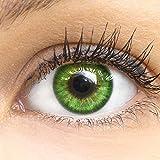 Grne Farbige Kontaktlinsen Fresh Mint Grn Sehr Stark Deckende SILIKON COMFORT NEUHEIT von GLAMLENS +...