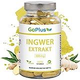 INGWER Hochdosiert, Natürlicher Ingwer-Extrakt. 500mg reiner Ingwer pro Kapsel. - Erkältung -...