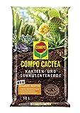 COMPO CACTEA Kakteen- und Sukkulentenerde mit 8 Wochen Dnger fr alle Kakteenarten und dickblttrige...