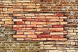 3D Wandpaneele Restposten! - groe Auswahl von stabilen und pflegeleichten PVC Platten - zur...