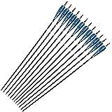 ZZUUS 31 Carbon Pfeile mit blauen und weißen Truthahnfedern Zielpfeile Austauschbare Jagdspitzen...