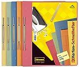 Idena 307035 - Kartonschnellhefter, 250 g/m², DIN A4, 25 Stück, 5-fach farbig sortiert, 1 Set