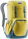 deuter Unisex– Erwachsene Walker 20 Urban Rucksack, turmeric-arctic, 20 L