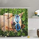 Goodckn süßer Chihuahua mit Brille, Gras, Seine Tiere, Tiere, Wildtiere, Duschvorhang mit Haken,...