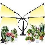 Pflanzenlampe LED Vollspektrum Pflanzenlicht 144 LEDs, Pflanzenleuchte für Zimmerpflanzen...