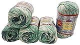 Everyday Viking 5 x 100 Gramm Antipilling Wolle mit Farbverlauf, 500 Gramm Strickwolle mit...