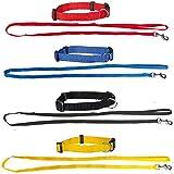 Schecker Set aus: 4 Welpenhalsbänder + 4 Welpenleinen im Set 4 Farben ideal für Züchter oder...