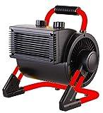 Aktobis Elektroheizer Frostwchter WDH-BGP02 (2 kW)