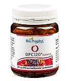 BioProphyl® OPC120® plus Acerola - Das Original - 120 mg reines OPC aus 300 mg Traubenkernextrakt...