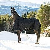 horze Nevada Winterdecke Weidedecke für Pferde mit 1200D Ripstop und Schwerer 400g Füllung,...