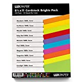 LuxPaper Bastelkarton für Bastelarbeiten und Karten, 21,6 x 27,9 cm Cover/Scrapbook-Zubehör, 1...