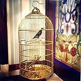 NanXi Europäische Große Runde Käfig Starling Brothers In Alexandria Graupapagei Vogelkäfig Villa...