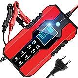 BURNNOVE Autobatterie Ladegerät 12V/24V 8A Vollautomatisches Batterieladegerät mit LED-Bildschirm...