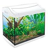 Tetra 211957 AquaArt Shrimps Aquarium-Komplett-Set 20 L, ideal für die Haltung und Zucht von...