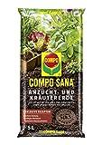 COMPO SANA Anzucht- und Kräutererde mit 6 Wochen Dünger für alle Jung- und Kräuterpflanzen,...