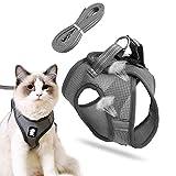 katzengeschirr mit leine,Katzengeschirr,cat harness and leash,katzengeschirr kleine...