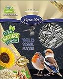Lyra Pet® 25 kg Sonnenblumenkerne 25000 g gestreift Vogelfutter Winterfutter Streufutter HK...
