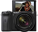 Sony Alpha 6600   APS-C Spiegellose Kamera mit Sony 18-135mm f/3.5-5.6 Zoom-Objektiv (Schneller...