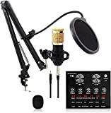 FHISD Kondensatormikrofon Professionelles Cardioid Studio Mic Kit mit Auslegerarm, Schockmontage,...