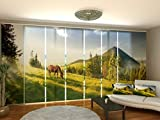 Wellmira Fotogardine Pusteblume 2, Flächenvorhang, Fotodruck, Schiebevorhang, Bedruckte...