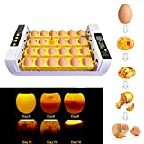 Ksruee Inkubator Vollautomatische Brutmaschine, 24 Eier Hühner Eier Brutgerät LED...
