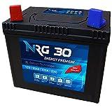 NRG Premium Batterie 30Ah 12V Rasentraktor Aufsitzmäher Plus Pol Links Fleurelle MTD Partner John...