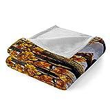HJKGSX Kuscheldecke Wohndecke Tagesdecke Decke Doppelseitig superweiche luxuriöse Decke(150x200...