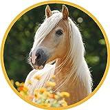 Tortenaufleger Pferd1 / 20 cm