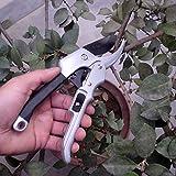 Gerwhdfhnbcv Gartenbauschere, 20 cm, mit Ratsche, Gartenbau, Gartenschere, Gartenschere,...