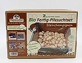 Bio Steinchampignon Komplettset 5kg - Pilze selber züchten