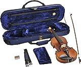 Steinbach 1/2 Geige im SET Ebenholzgarnitur angeflammter Boden