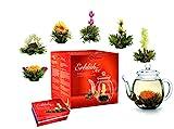 Creano Teeblumen Mix - Geschenkset Erblühtee Frühjahrslese mit Glaskanne Weißer Tee in 6 Sorten,...