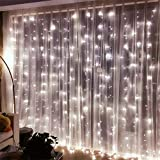 SOAIY LED Lichterketten Lichtervorhang 304 LEDs 16 Stränge Lichterkettenvorhang 3M*3M IP44 8 Modi...