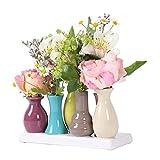 Keramikvasenset Blumenvase Keramikvasen bunt Vase Blumen Pflanzen Keramik Set Deko Dekoration (7...