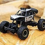 Sksngf Offroad Radio gesteuerte Highspeed RC LKWs Drive Buggy Toys Cars RC Car 1/10 Fernbedienung...