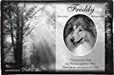 Pokal Center Westerheider Tiergrabstein mit eigenem Bild, Gedenkstein für Hunde, Katzen und...