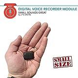 Mini Modul Spionage Rekorder Stimmenaktivierter | 8GB 570 Stunden | Nur 8mm dnn | HQ Stimme 1536kbps...