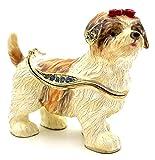 Pillendose Die süßeste Havanese Dame Geschenk Idee Deko Jewelry Box Figur Sammlerstück Schmuck...