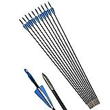 ZSHJG 12pcs Fiberglaspfeile 31 Zoll Bogen und Pfeile für Bogenschießen Schießübungen Bogenpfeile...