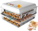 BYCDD Digital vollautomatischer Ei-Inkubator 96 Eier Geflügelbrühe für das Schlupfer...