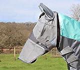 Swish Equestrian Fliegenmaske mit Nase