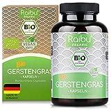 Raibu® BIO Gerstengras Kapseln - Einführungspreis | 180 Kapseln | Hochdosiert mit 4000mg pro...