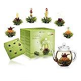 Creano Teeblumen Mix - Geschenkset Erblühtee mit Glaskanne Grüner Tee fruchtig aromatisiert...