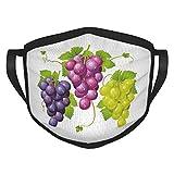wokao Grapes Home Decor Drei-Cluster of Efeu, Burgunderrot, Mischung, frische Bilder, Kunstwerk,...