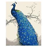 DIY Malen nach Zahlen Kits Blauer Pfau Vorgedruckt Ölgemälde Geschenk von Nummer Farbe Leinwand...