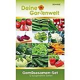 Gemüsesortiment | Gemüse-Set mit 12 Sorten Samen | Gemüsesamen-Sortiment | Saatgut für den...